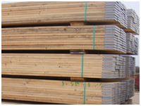 Scaffolding Boards